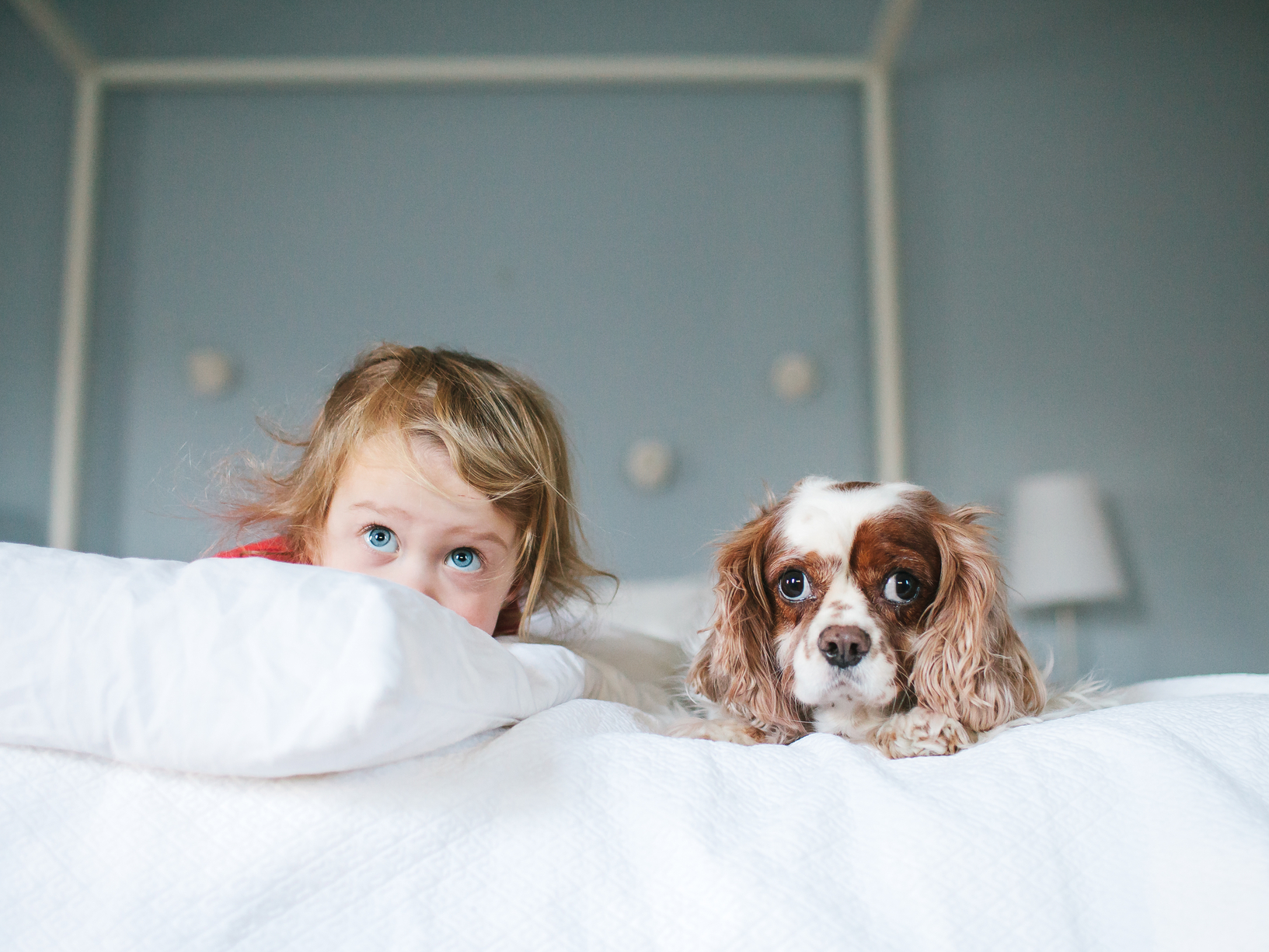 Cute dog photos - young child and her dog